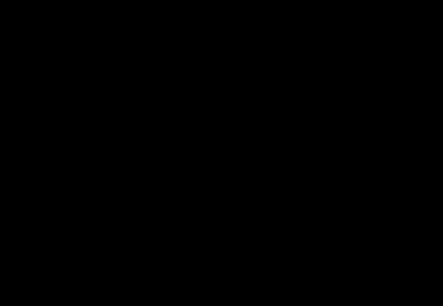 Baumstudie mit Rabe 38×55